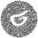 фотограф на пленку ксения милушкина